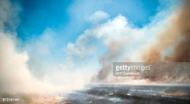 A field burns after an 80 acre spot fire broke out in Butte County California on July 10 2017 More than a dozen wildfires were raging across...
