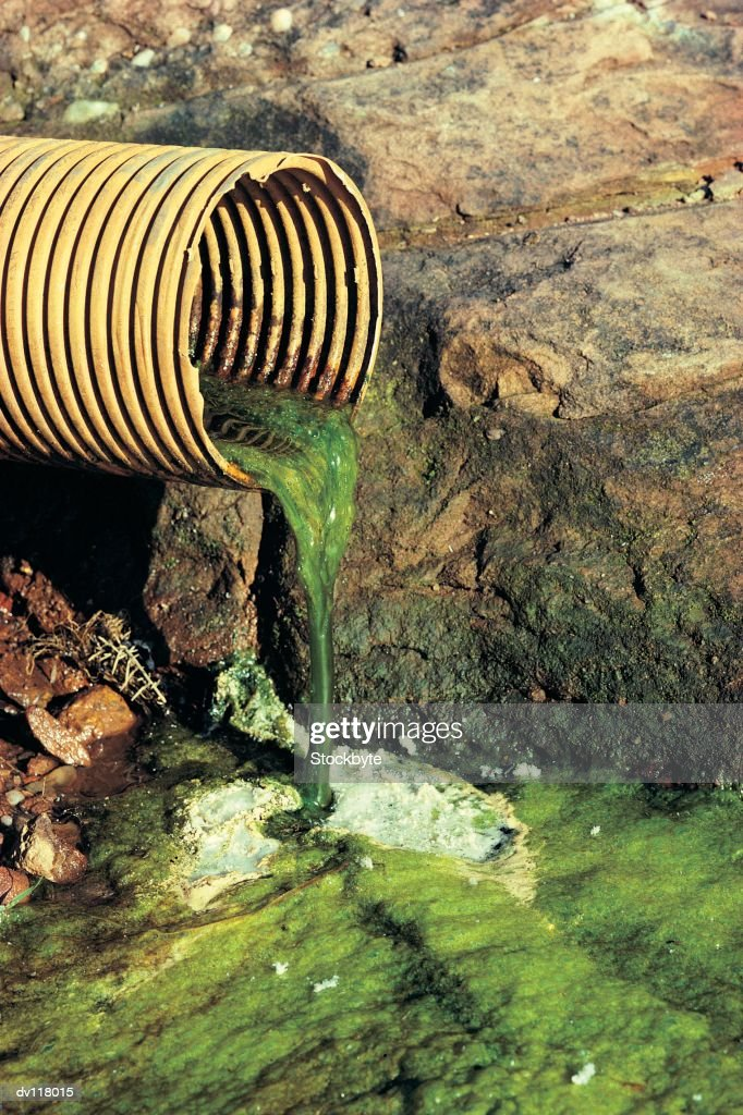 Field drainage pipe with green outflow : Stock Photo
