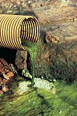Field drainage pipe with green outflow