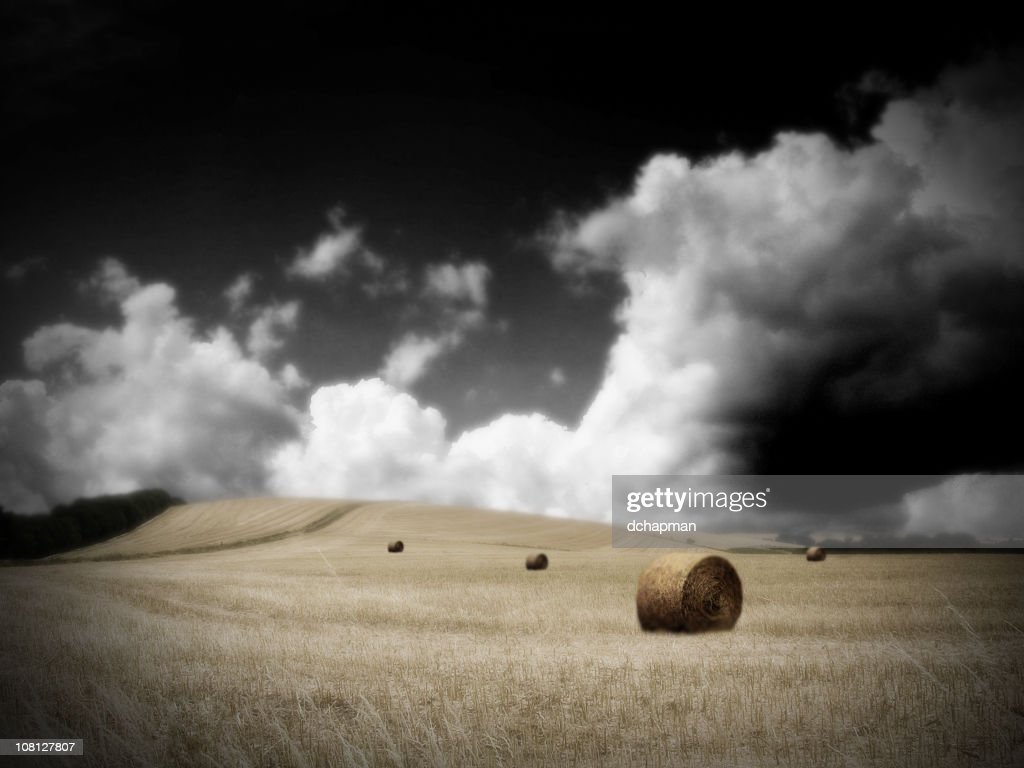 Field Full of Hay Bales with Dark Cloudy Sky : Stock Photo