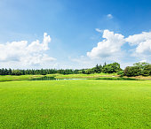 field of green grass and blue sky in summer day,beautiful natural scenery