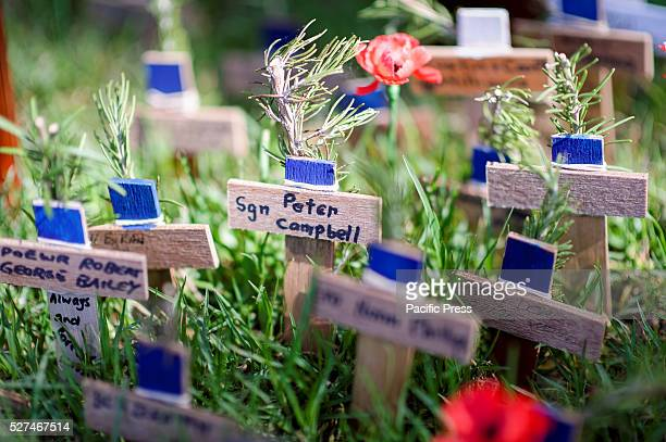 Field of Remembrance conducted by War Widow's Guild of Australia in Hyde Park Sydney The field is open to the public to plant small wooden crosses...