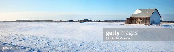 フィールドの雪