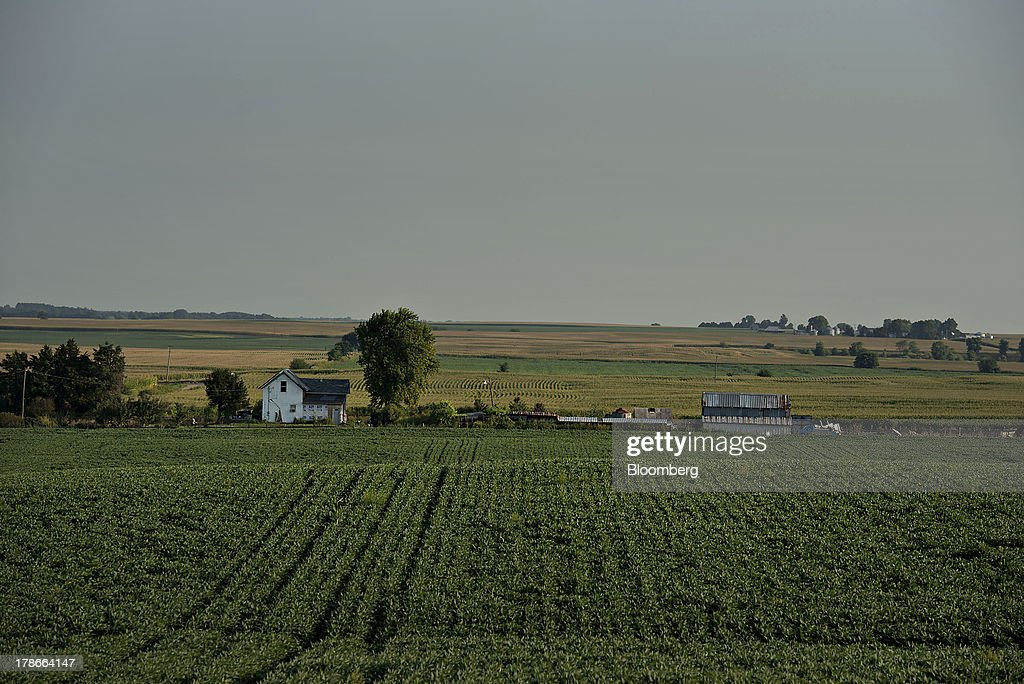 A field of soybeans grow near a farmstead outside of Sheffield, Illinois, U.S., on Wednesday, Aug. 28, 2013. Wheat futures fell for a third straight day on signs of slack demand for inventories from the U.S., the worlds largest exporter, while soybeans dropped and corn gained. Photographer: Daniel Acker/Bloomberg via Getty Images
