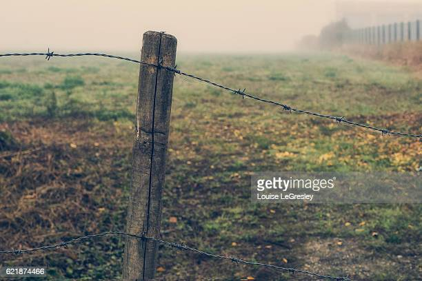 A field protected by a barbed wire fence on a foggy morning