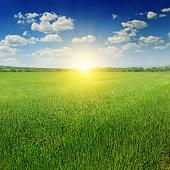 field, sun rise and blue sky