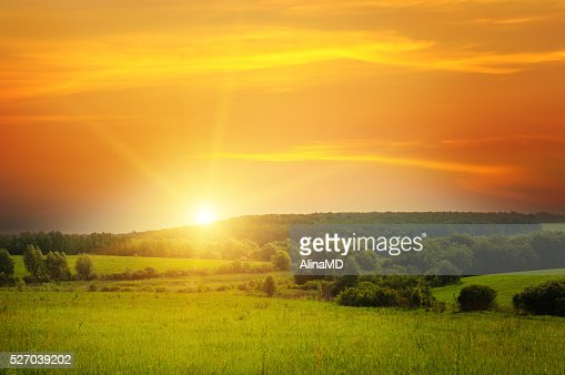 field, sunrise and blue sky : Stock Photo