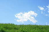 Field under blue sky, Tokyo prefecture, Japan