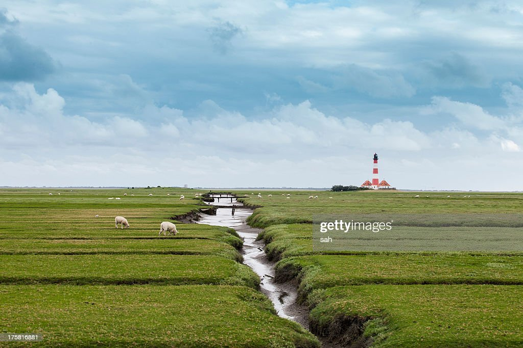 Field with distant lighthouse, Schleswig Holstein, Germany