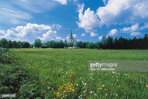Field with flowers and a village in the background Gotland Sweden