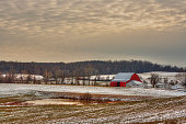 Field with red barn