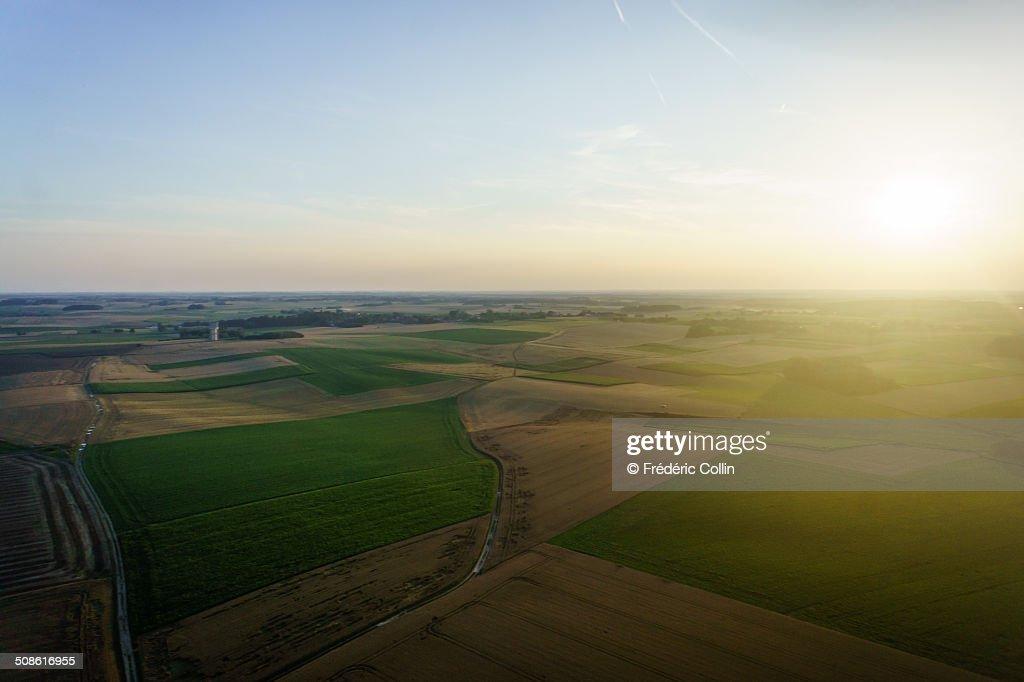 Fields at sunset : Stock Photo