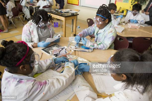 Fifth grade students dissect owl pellets in a science classroom at the Excel Academy Public Charter School in Washington DC April 5 while waiting for...