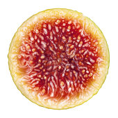 Fig Cross Section On White