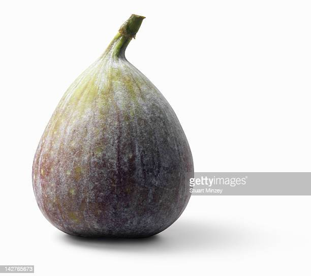 Fig on white background