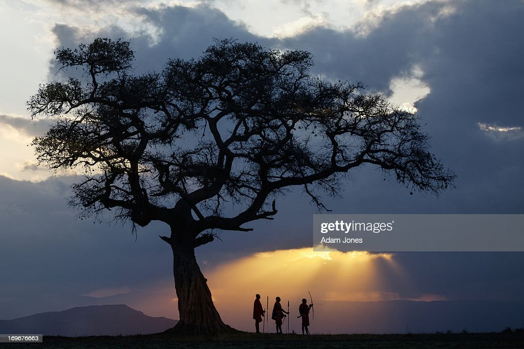 Fig tree and three Masai men silhouetted