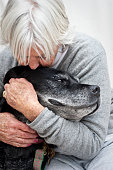 Figgy, an aged dog gets a cuddle from an aged carer. Melbourne.