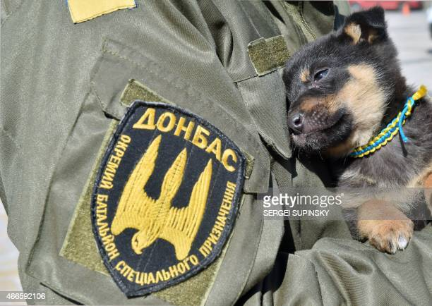 A fighters of the Ukrainian Donbass volunteer battalion holds a puppy with a colar featuring colors of the Ukrainian flag on March 17 2015 during a...