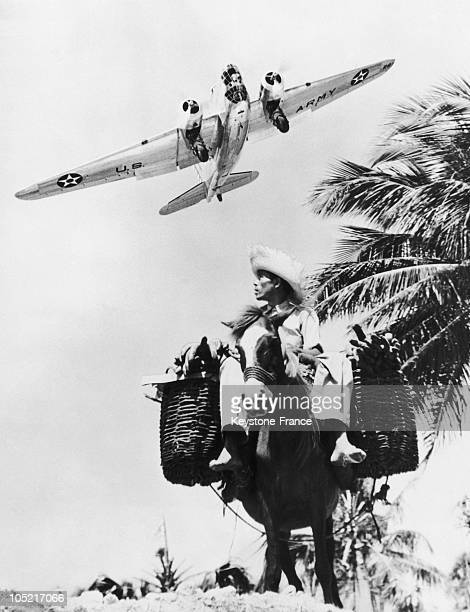 Fighting Plane And Bananas Seller In Puerto Rico