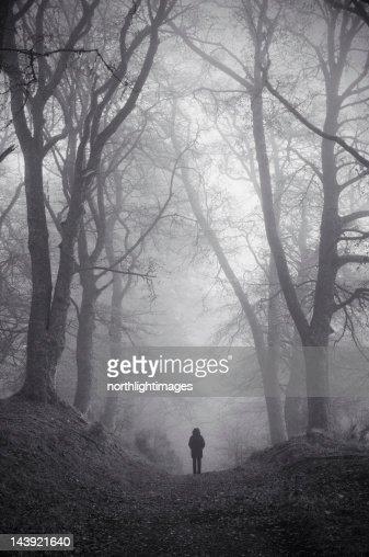 Figure in misty woodland