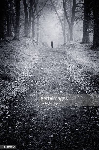 Figure standing in misty woods