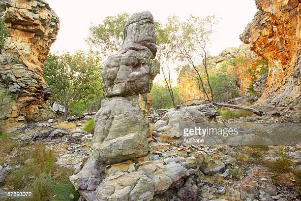A figurelike formation in the Lost City sandstone outcrop Wongalara Station Reserve southeast Arnhem Land Northern Territory Australia
