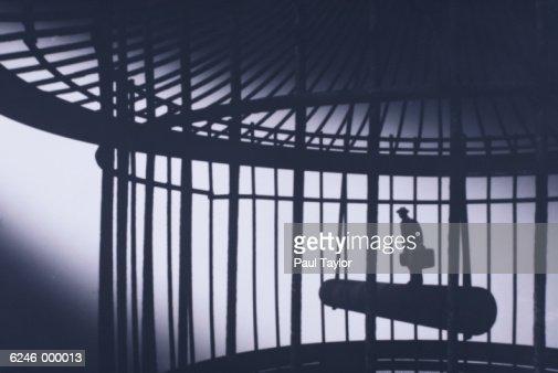 Figurine in Bird Cage