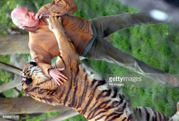 File dated 12/5/96 of millionaire businessman and zoo keeper John Aspinall with Jara a nineyearold female Indian tiger at Howletts Wild Animal Park...