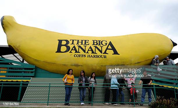 Filipino tourists inspect The Big Banana sculpture near Coffs Harbour on September 12 2011 Built in 1964 to promote the local banana industry 'Big...