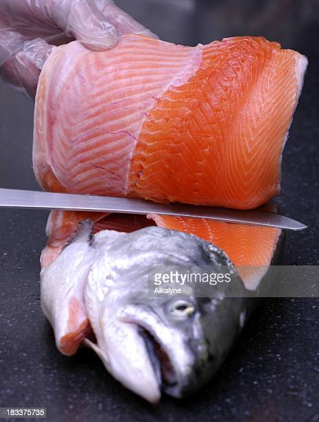 Filleting fresh salmon