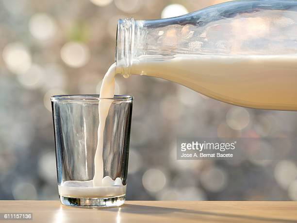 Filling of a glass of milk in a glass glass with natural light