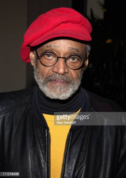 Film director Melvin Van Peebles attends the reception for the documentary film 'Why We Fight' written and directed by Eugene Jarecki at the Sony...