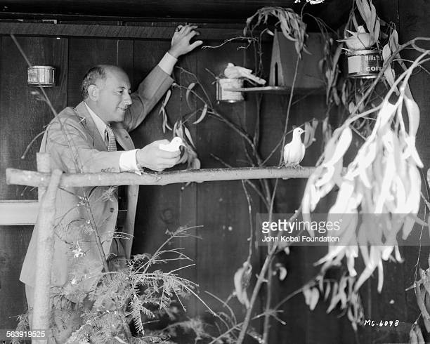 Filmmaker Cecil B DeMille tending to birds in an aviary 1930