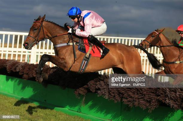 Final Nudge ridden by Gareth Malone on his way to winning the Southwell Golf Club Pay And Play 'National Hunt' Novices' Hurdle