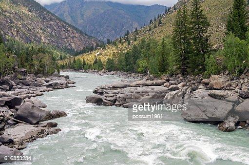 Final part of 'Atlantes' rapids, Argut river. Altai,  Russia. : Stock Photo