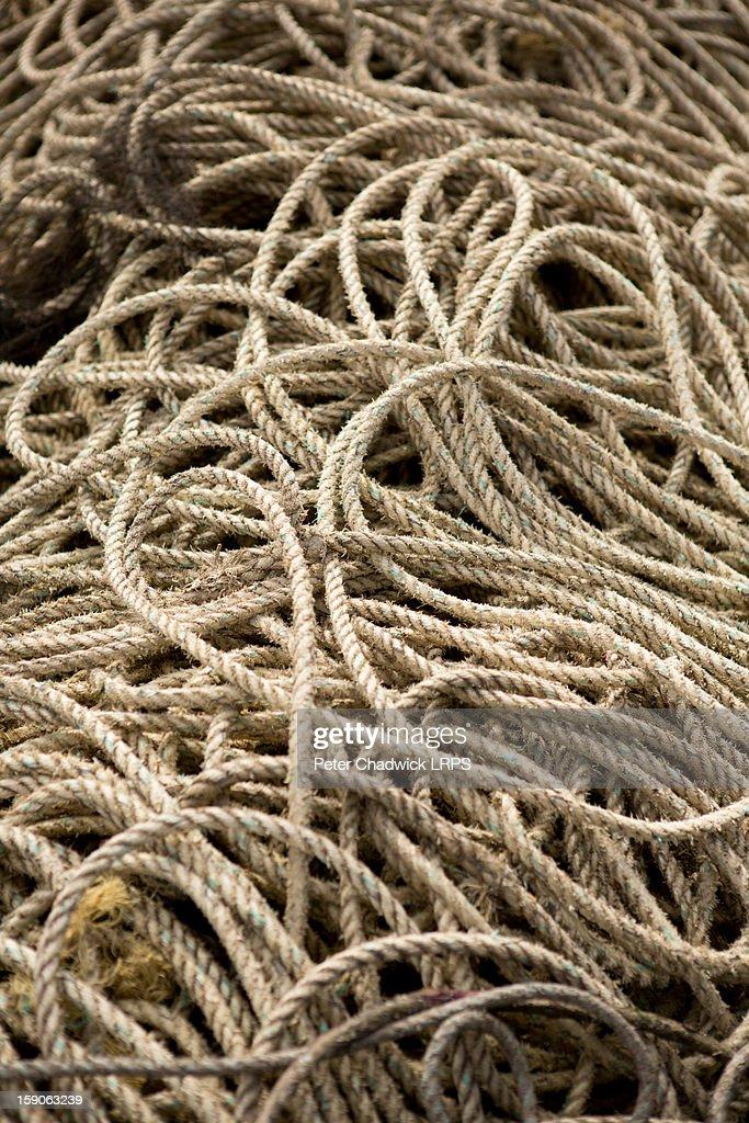 Fine rope : Stock Photo