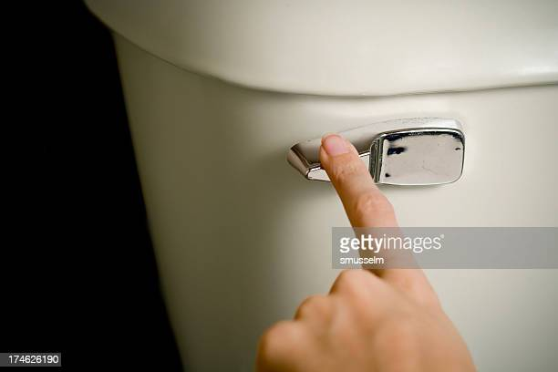 Flushing Toilette