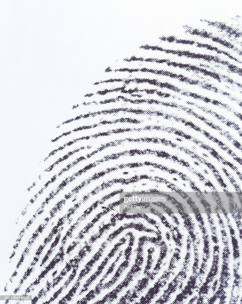 Fingerprint , close-up : Stock Photo