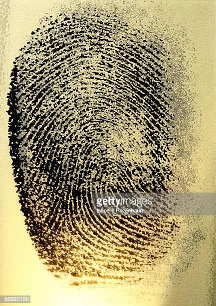 Fingerprint, close-up