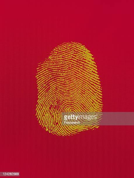 fingerprint, Composite
