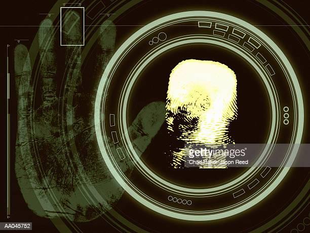 Fingerprint Scanning, Identification