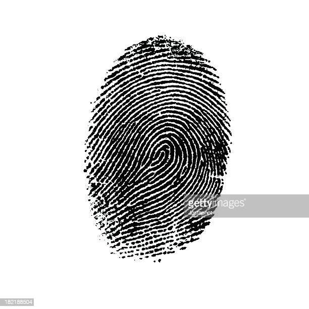 Lettore di impronte digitali - 4