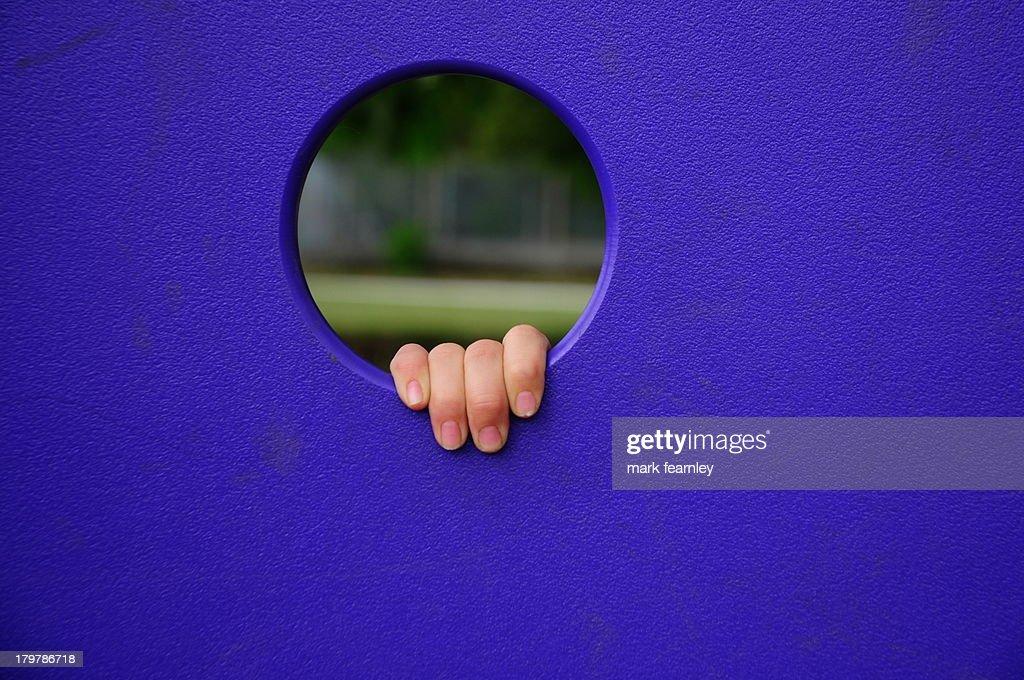 fingers : Stock Photo