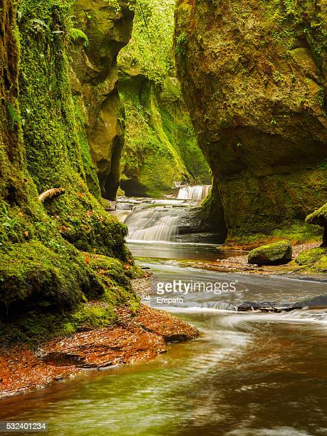 Finnich Glen, near Killearn, Scotland.