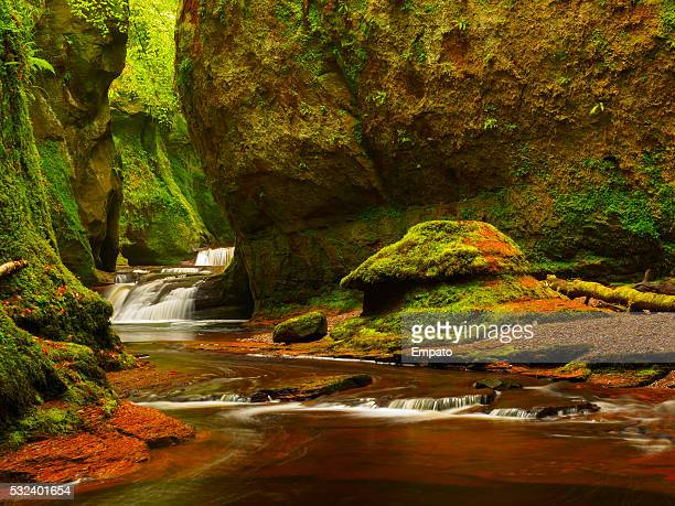 Finnich Glen - The Devil's Pulpit.