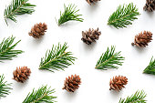 Christmas design background from coniferous twigs and cones