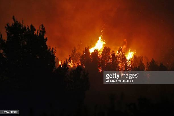 A fire burns as firefighters battle to control a fire that broke out in the Israeli town of Nataf west of the Arab Israeli town of Abu Ghosh along...