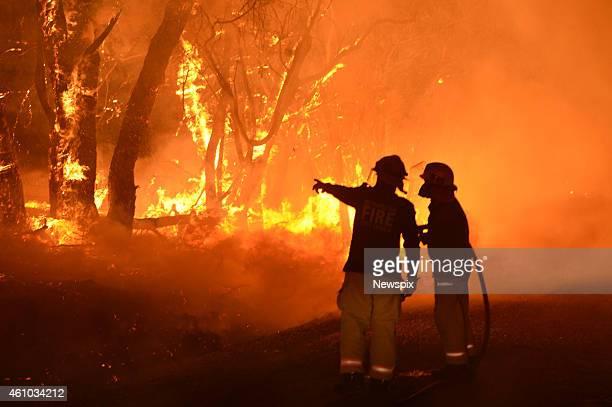 MFS fire crews fight a bushfire on Wattle Road in Kersbrook on January 2 2015 in Adelaide Hills Australia