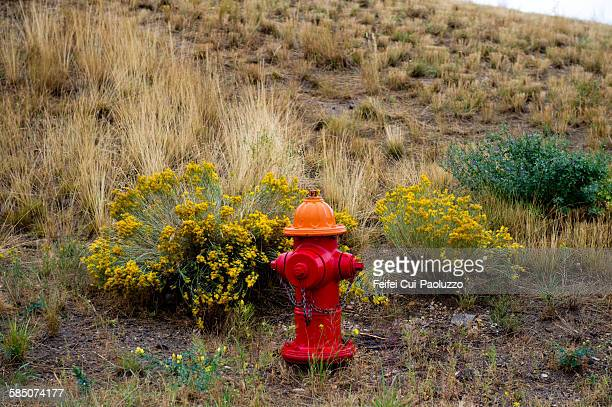 Fire hydrant at Butte Montana State USA