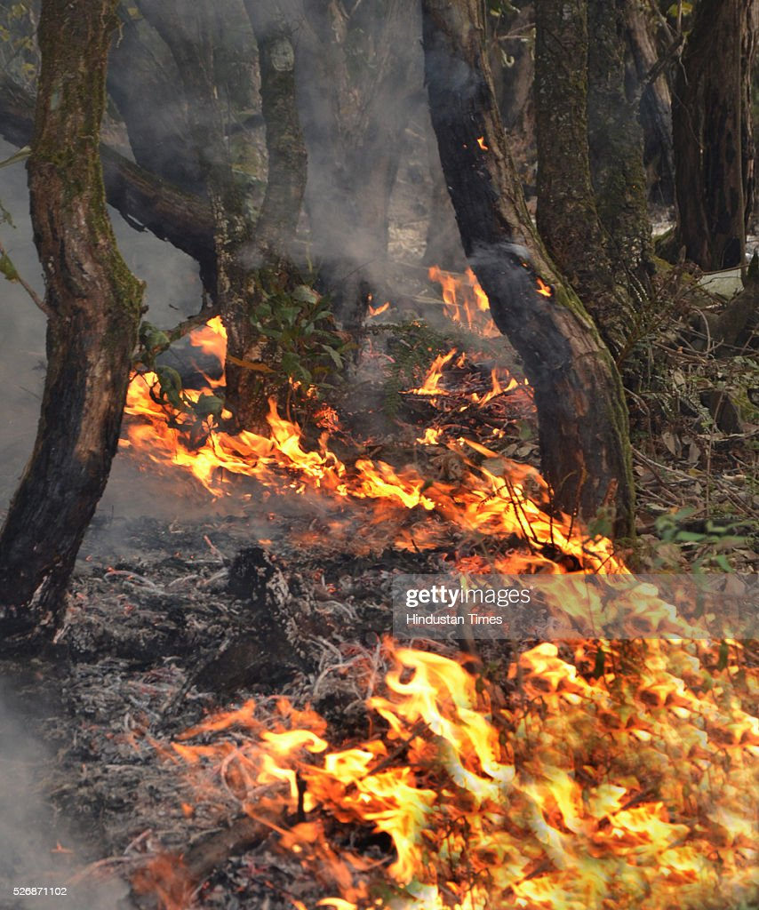 Fire in the jungles of Gorkhyakhal near Pauri, on May 1, 2016 in Uttarakhand, India. Two Indian Air Force (IAF) choppers began spraying water over the burning forests in Uttarakhand on Sunday morning. Major forest fires raged across Uttarakhand even as two Indian Air Force (IAF) choppers have begun spraying water to extinguish the flames. Presently, some 5,000 workers -- including 3,000 daily wagers -- are engaged in putting out the fire. More than 2300 hectares of forest have been gutted in the fire since it was first reported in February this year. Dry winters and soaring temperatures are blamed for the fire that has affected all 13 districts of the state.